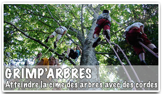 Normandie Events Grimparbres Accueil