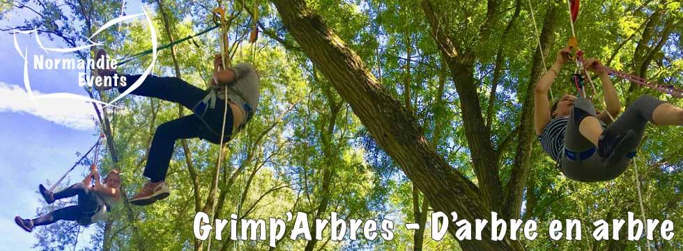 Activité Arborigrimpe - Grimp