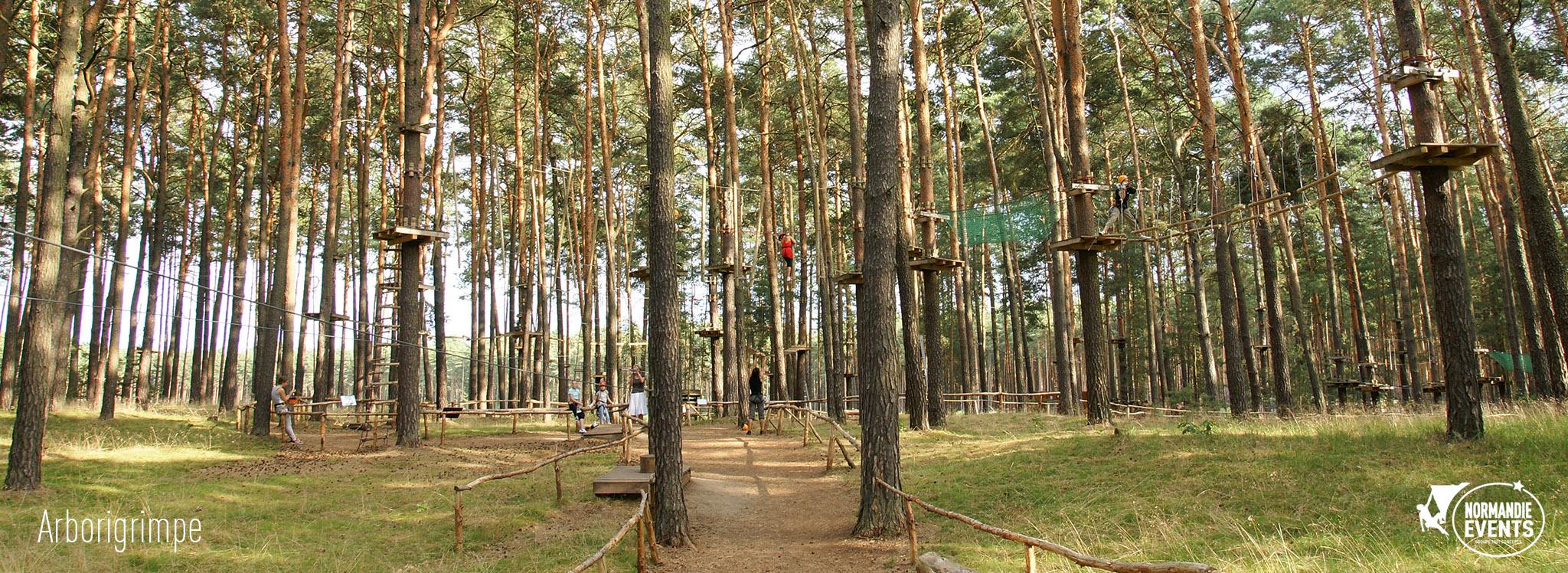 Accueil Arborigrimpe - Escalad